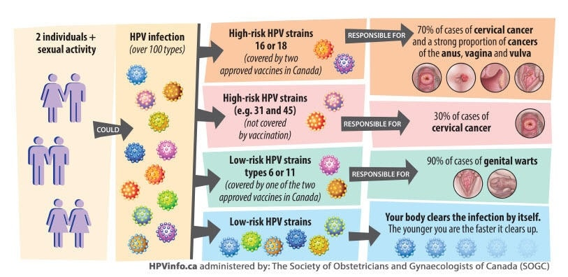 transmission hpv risques