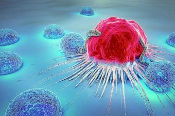 cellule cancereuse attaquee cancer