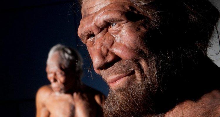 Une intelligence artificielle a permis de découvrir un nouvel ancêtre humain