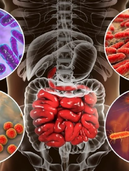 microbiome bacteries age