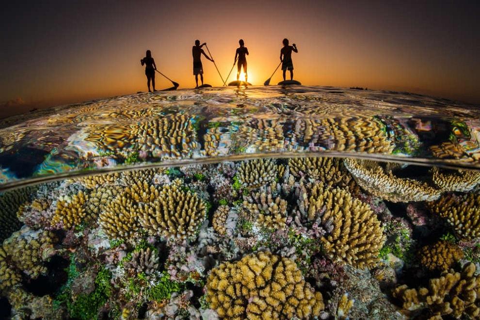 paddle coraux tonga