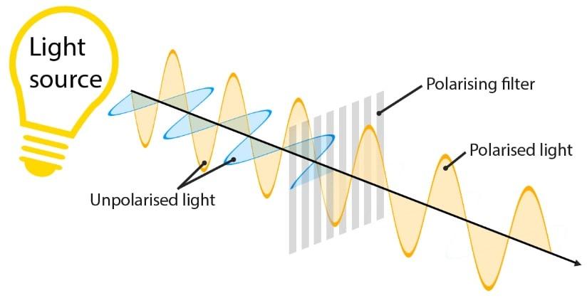 polarisation lumiere onde