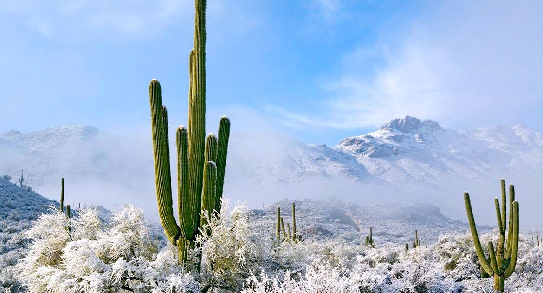 rares chutes neige desert arizona paysage glace