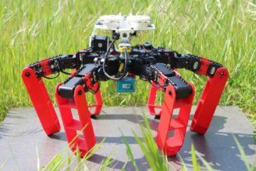 antbot robot gps