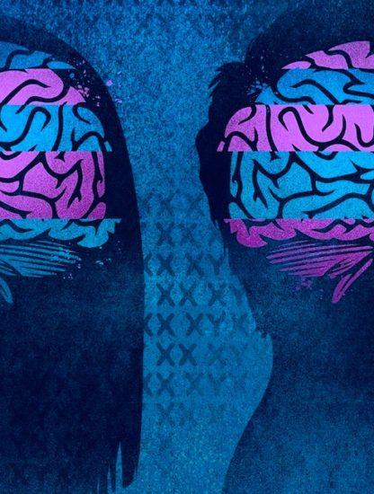 cerveau difference sexe