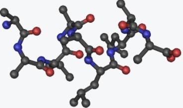 irisine hormone structure