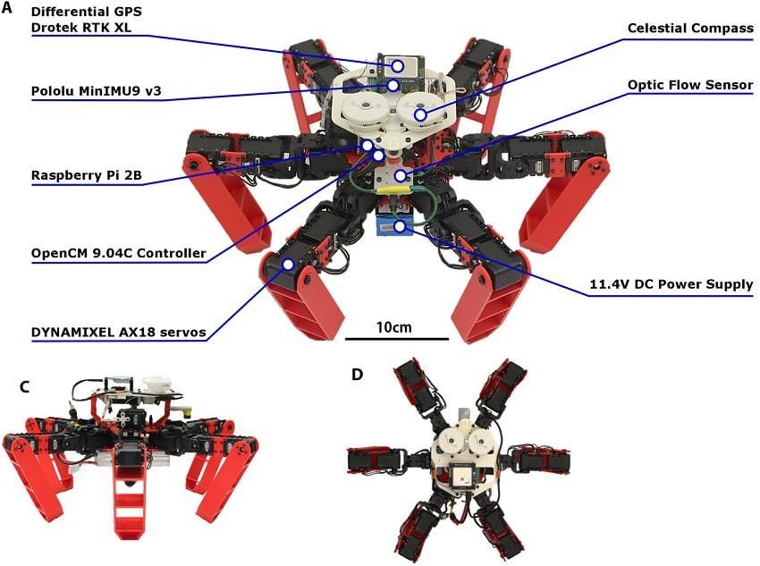 schema robot antbot