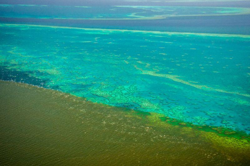sediments eau polluee grande barriere corail afp