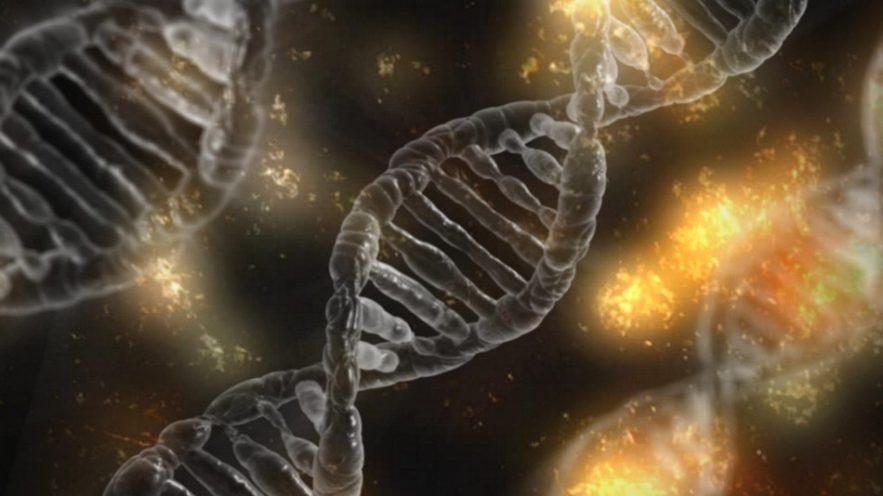adn mutation genetique filmee video