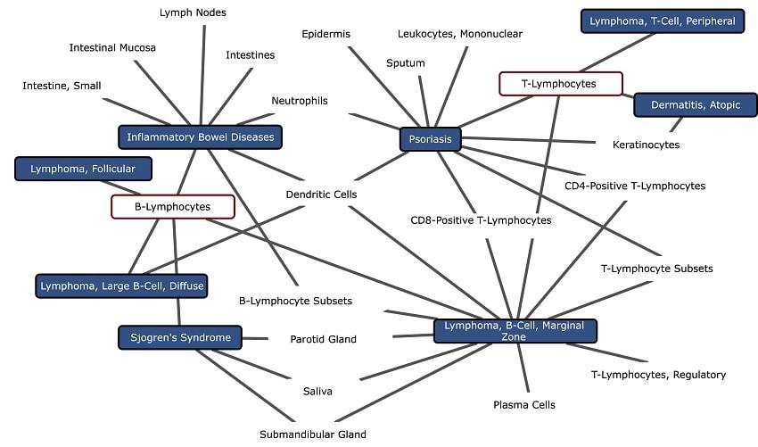 arbre maladie lymphocytes