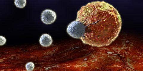 maladie auto immune PD-1
