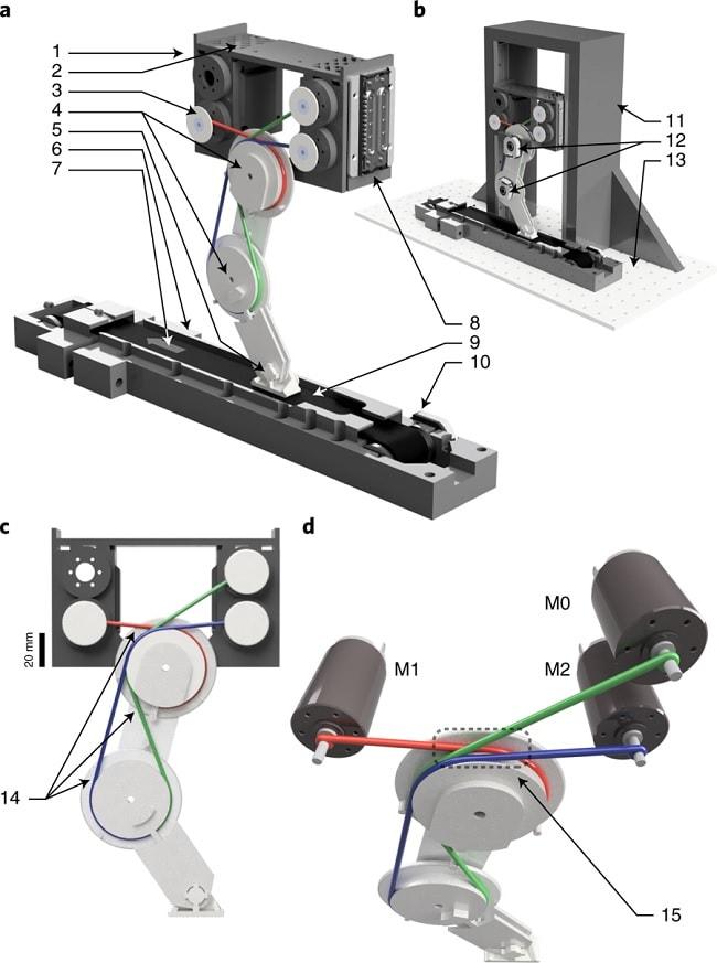 structure jambe robot