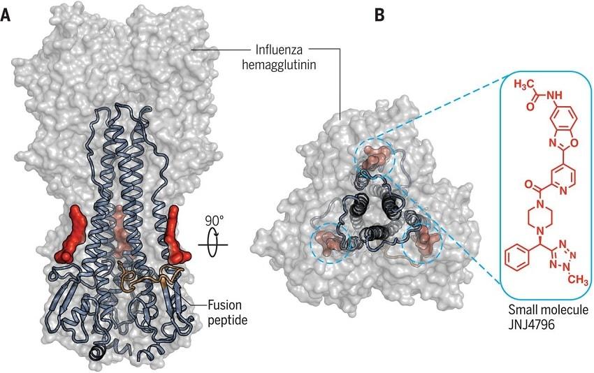structure molecule influenza