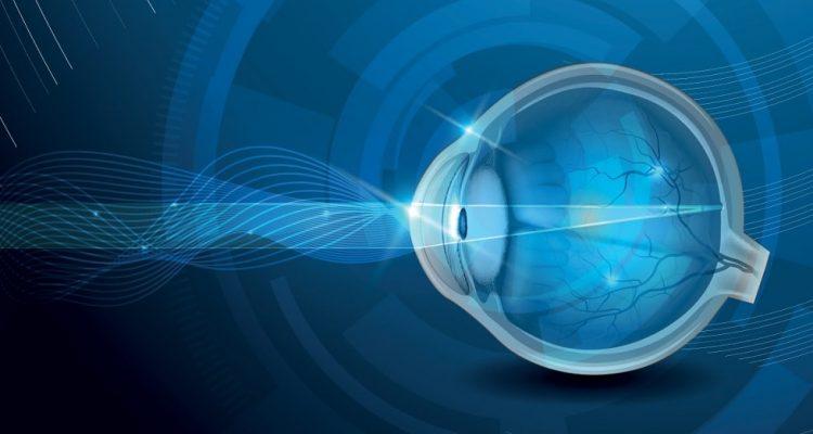 yeux vision nocturne