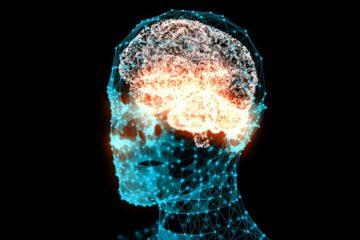 cerveau activite cerebrale son audible comprehension