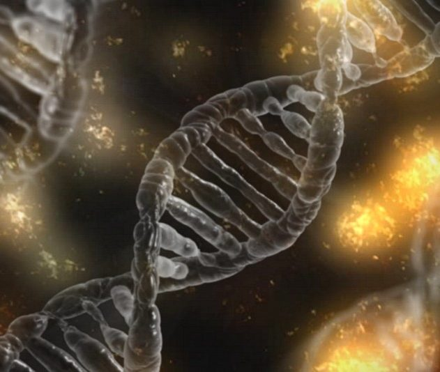 crispr modification genetique