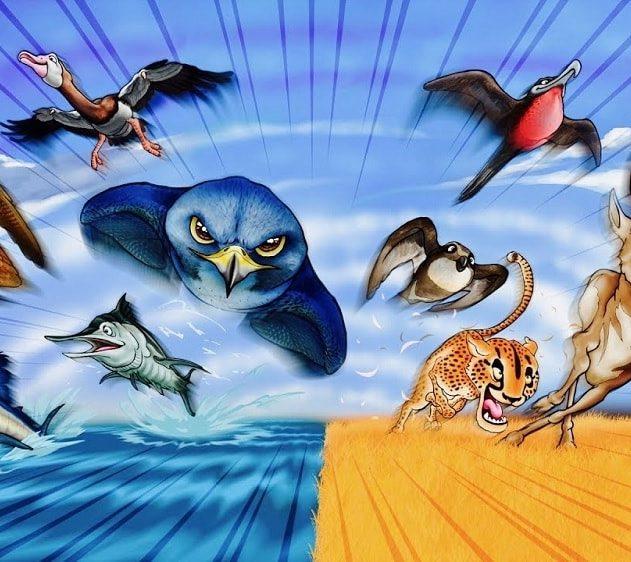 animaux rapidite vitesse