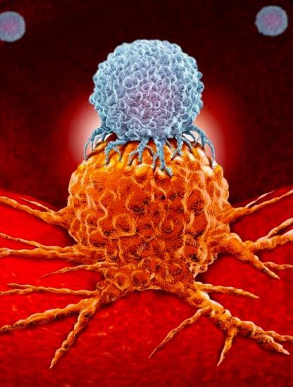 cellule cancer immunotherapie
