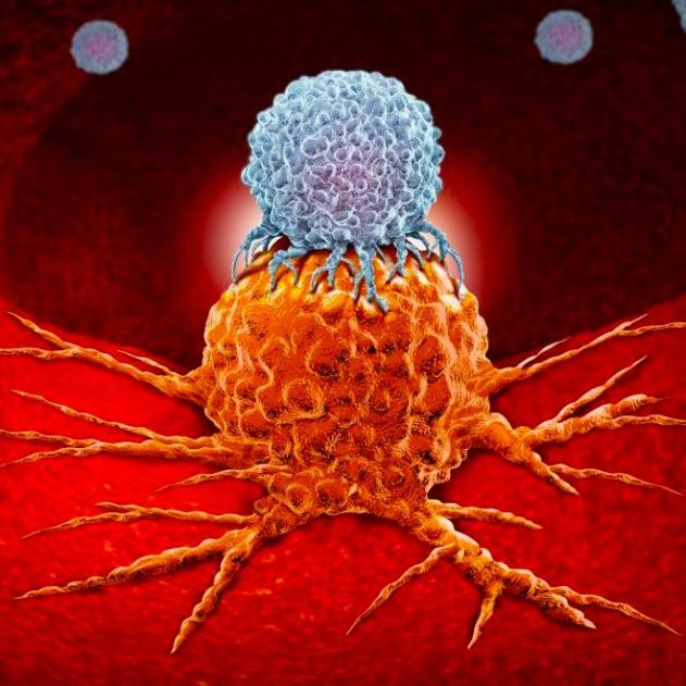 cellule cancer immunotherapie