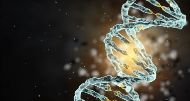 virus de l'herpès simplex 2 datant Hilary Rhoda datant Mark Sanchez