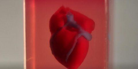 impression 3d coeur