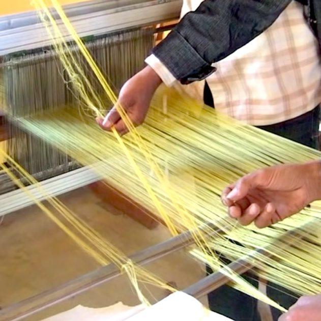 soie araignee produite a partir de bacteries
