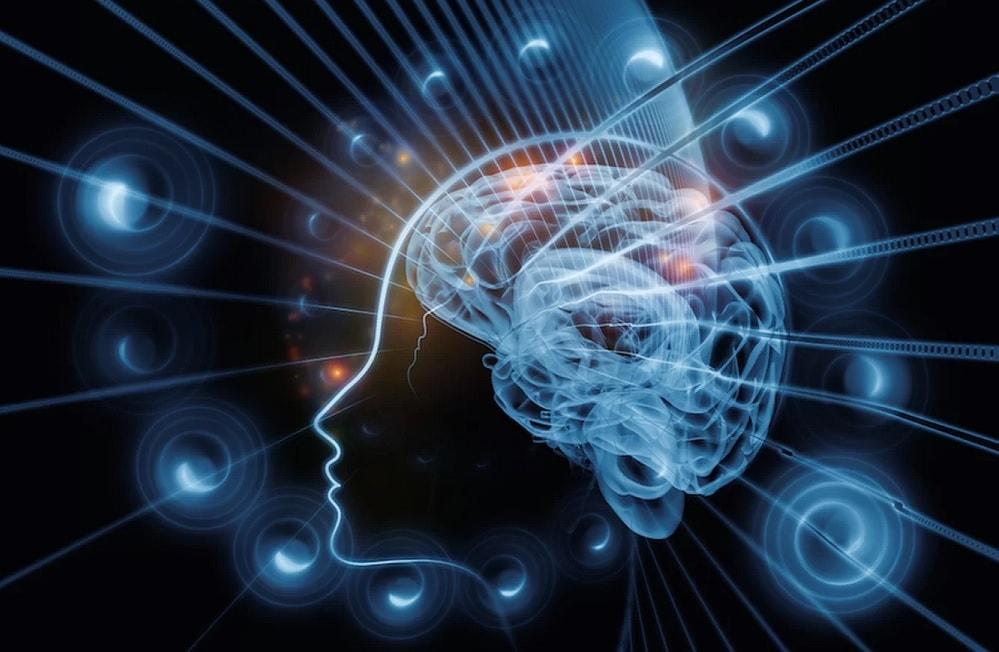 cerveau imagination realite