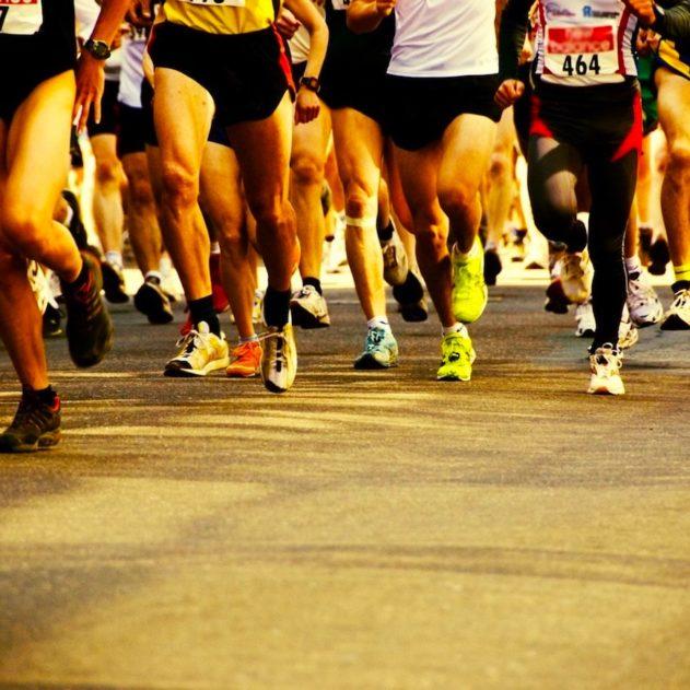 endurance metabolisme humain