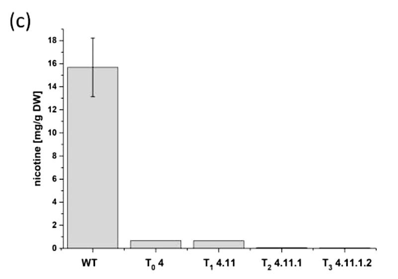 plante taux reduit nicotine comparaison schema