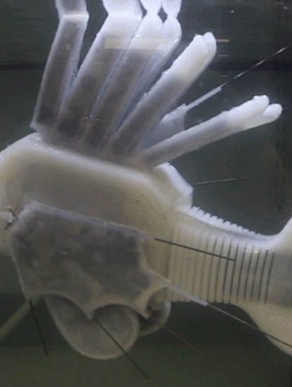 poisson robot fluide