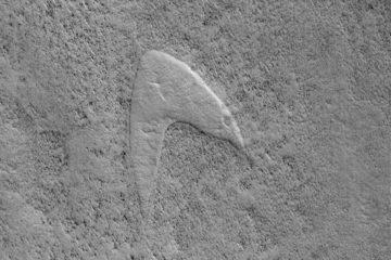 starfleet-mars