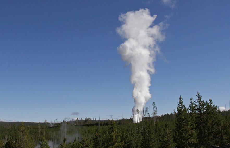 steambot geyser activite