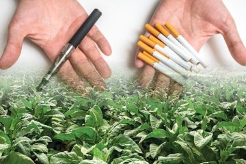 tabac genetiquement modifie solution lutte contre tabagisme
