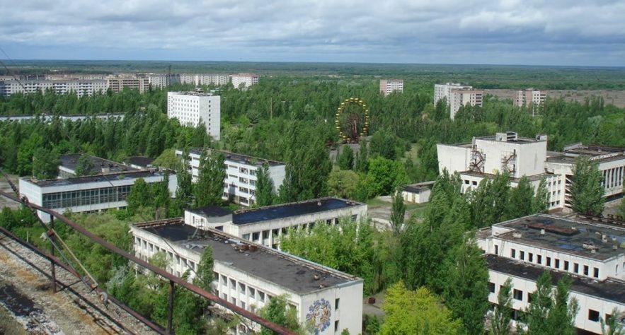tchernobyl plantes