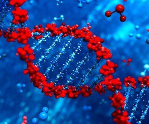 ARN epigenetique molecules