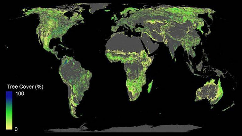 ajout 1 milliard hectares forets lutte changement climatique