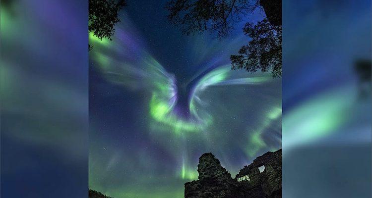 aurore polaire forme phoenix russie entier