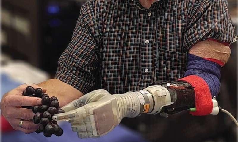 bras robotique raisins