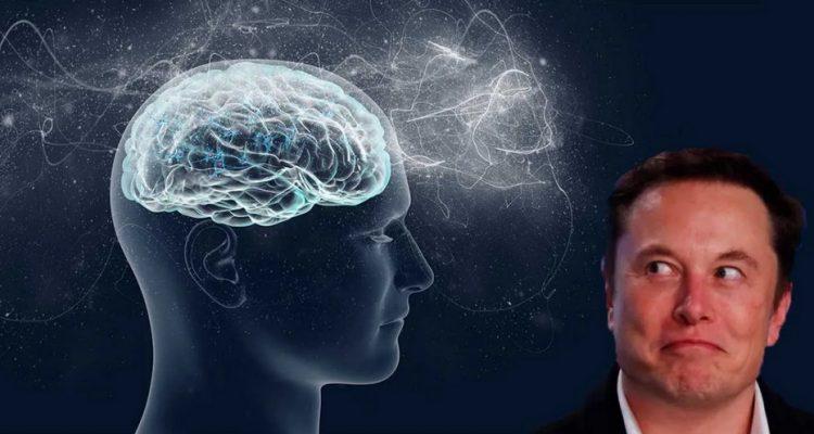 Elon Musk veut lier un cerveau à un ordinateur dès 2020 — Neuralink