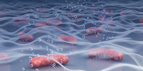 materiau biohybride energie
