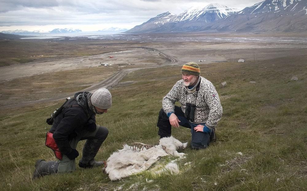 restes rennes decouverts norvege rechauffement climatique
