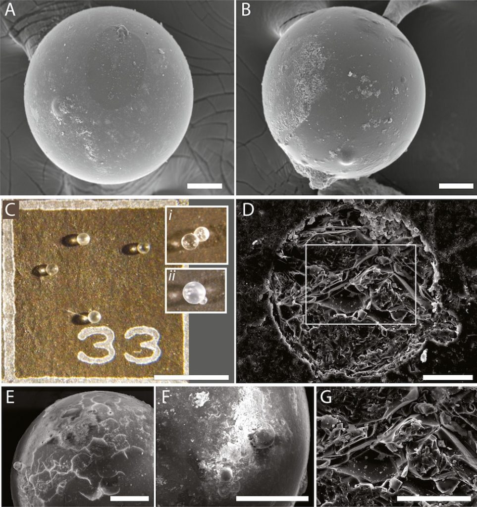 anciennes billes cosmiques-traces impact meteorite vues microscope