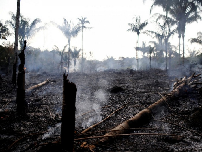 foret incendie amazonie brezil