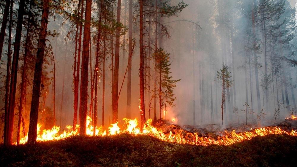 incendies arctique