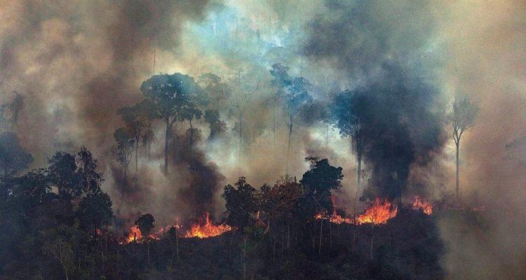 La forêt brûle aussi en Bolivie — Amazonie