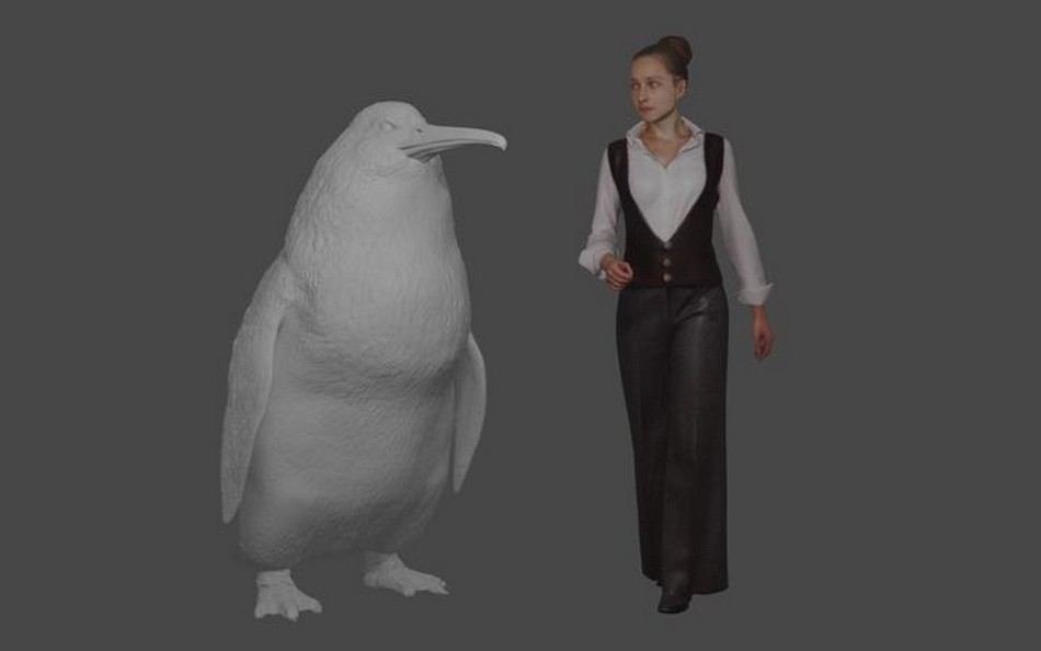 pingouin nouvelle zelande taille humaine