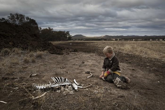 secheresse australie rechauffement climatique climat