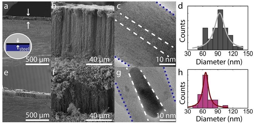 foret nanotubes carbones