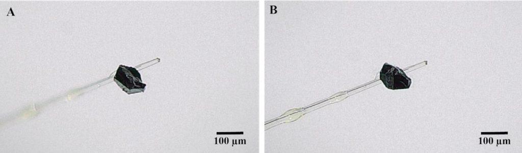 mineral nouvellement decouvert vue microscope