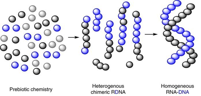 molecule hybride